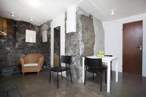 Apartment in Reykjavik, ground fllor