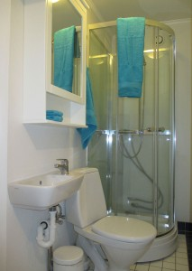 Bathroom in main apartment
