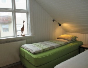 Twin Room at Loft Apartment in Reykjavik